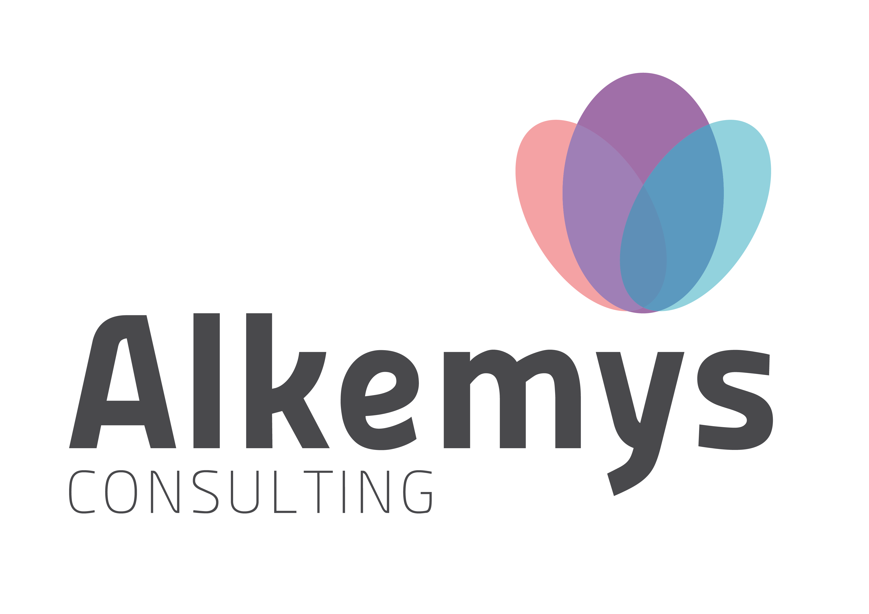 Alkemys Consulting
